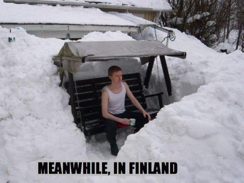 Meanwhile-in-Finland.jpg